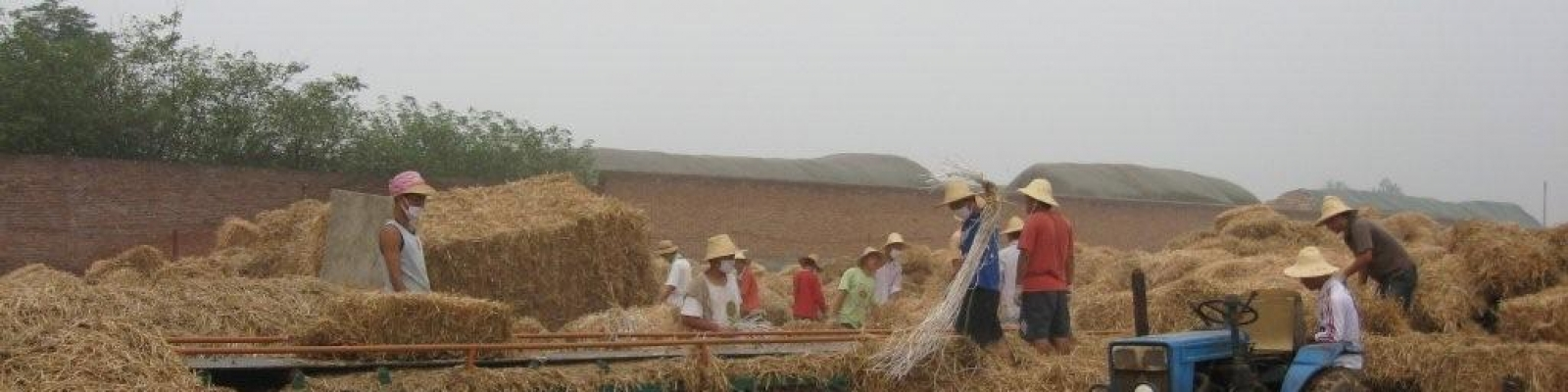 The production of fibreboards from straw