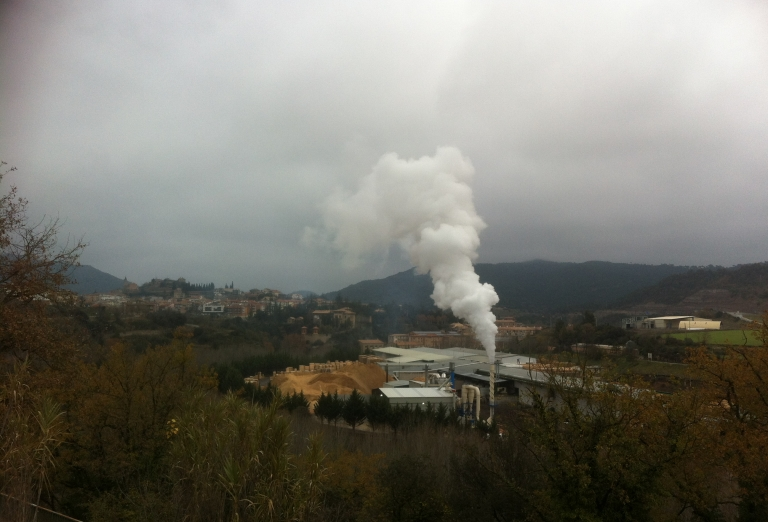 The production of bio-fuel from wood fibre