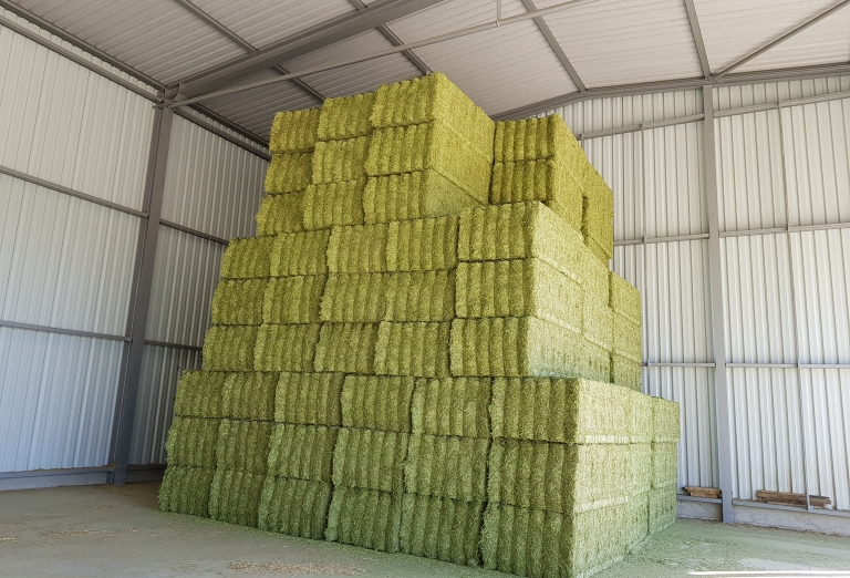 Drying of lucerne into pellets or bales