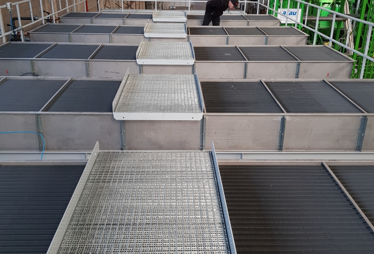 Drying of sawdust on a belt dryer